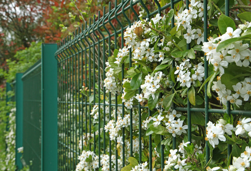 sposoby na ogrodzenia