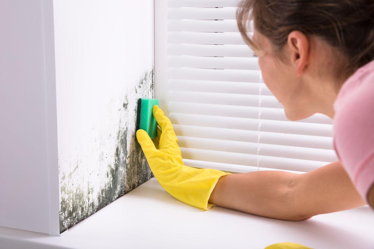 problem wilgości w domu a remont